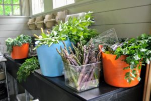 Once all the vegetables are picked, they are brought to the flower room, where they are washed and packed for the trip. It's so wonderful to know all these delicious, fresh vegetables come straight from my gardens.