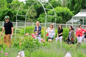 """The group came on a perfect weather day, when it wasn't too warm or too humid. My head gardener, Ryan McCallister, oversees these guided walks when I am in our New York office or away traveling. This week, I have been shooting the next season of """"Martha Bakes"""" which is on PBS."""