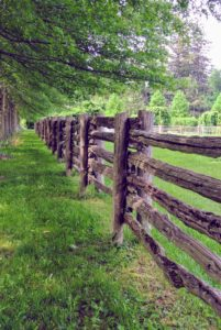 Visitors always ask about the fences that surround all the paddocks. These attractive fences are made of antique wood I purchased during a trip to Canada. It looks so natural here at the farm - as if it has always been part of the landscape.