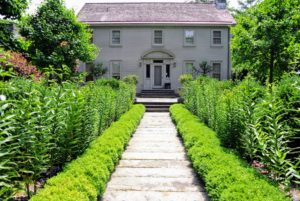 The garden behind my Summer House is always a favorite stop on the tour. The boxwood and growing lilies look very lush and green. This garden will soon be blooming with color.