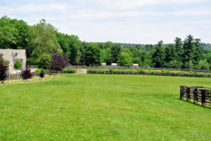 Here is a lovely view looking down the length of the southeast paddock to the chicken coops in the distance.