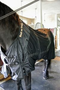 Sarah says the horses really do feel better after wearing them for a a couple of hours.