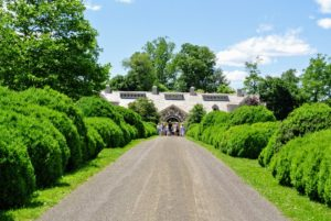 The Boxwood Allee on the way to the stable always grabs everyone's attention.