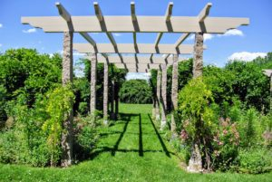Here is a new pergola built by my carpenter, John Kowalczyk, owner of JK Home Remodeling in Stamford, Connecticut. It looks so pretty.
