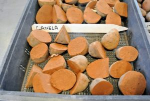 Canela potatoes are late-season tubers. They are good storage potatoes and have medium russet skin.