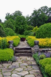 Here on the Terrace Parterre, everyone loved the boxwood and barberry. The colors add a dramatic touch to the terrace.