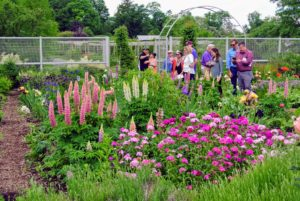 This group also loved walking through the flower cutting garden - many asked Ryan for tips on caring for their own flowering plants.