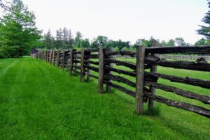 Our guests loved the antique fencing that surrounds all my paddocks.
