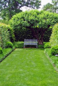 At the end is a simple sitting area under the shade of a beautiful apple tree.