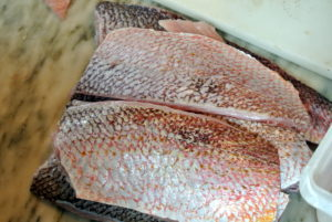This is American red snapper - so shiny and beautiful.
