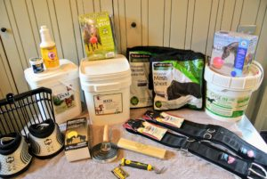 My stable manager, Sarah Levins, received a large delivery from Valley Vet Supply, including horse supplements, hoof boots, brushes, combs, saddle pads, horse sheets, toys and more. We always try new products to see which ones work best for my animals. https://www.valleyvet.com/