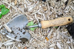 He is also using the potting trowel exclusively from Gardener's Supply Company. It has a wide, curved blade that is ideal for scooping soil. It also holds more soil than a traditional trowel. It is quite popular here at the farm.
