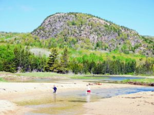 On Sunday, we hiked through Acadia National Park. Here are Jude and Truman having a wonderful time at Sand Beach. Beehive Mountain is behind them.