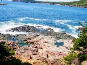 This photo is taken from taken from Great Head trail looking down to the ocean. Great head is a very popular trail because of the stunning panoramic views of the eastern coast of Mount Desert.