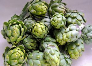 Look at our bounty of artichokes - and there are many more still growing! These were all picked yesterday during an early morning harvest.