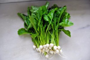 We also harvested turnips - such gorgeous pure white turnips. Turnips are round, tuborous roots grown as one of the cool-season vegetables. Botanically, they belong to Brassicaceae family, along with the cabbage.