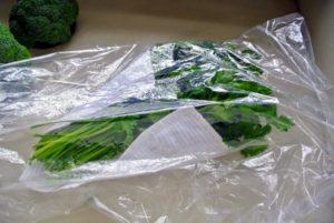 Then, I place each bunch in a large plastic bag, and put it in the refrigerator.