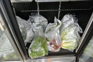 All the vegetables are ready to be packed in coolers. We will definitely have some wonderful feasts in Maine.