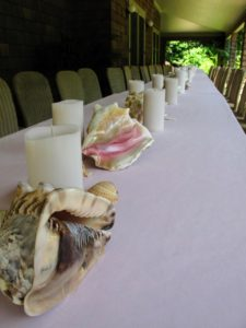 I have a large collection of shells, so I wanted to use them as centerpieces on the table. These conch shells look so pretty on the light pink tablecloth.