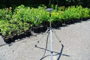 This tripod sprinkler is used for the thousands of tree seedlings that are being maintained and nurtured outside the greenhouse. The adjustable tripod can reach a height of 58-inches and has spiked feet to keep it stable on gravel, grass or soil.