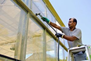 Here is Carlos washing the vegetable greenhouse windows with a Gilmour nozzle and hose - he says both are very light and manageable.