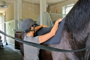 Here is Sarah placing the pad on Sasa. The pad is made of polypropylene and state-of-the-art Welltex fabric, which is infused with ceramic powder. The pad reflects the horse's natural body warmth to create a soothing infrared thermal feeling during the ride.