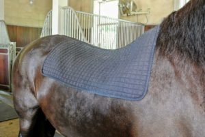 This Dressage Saddle Pad allows the horse's back muscles to loosen, relax, and warm-up quickly.