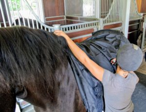It has a superb fit with a walking split to give the horse the utmost range of freedom in the shoulder.