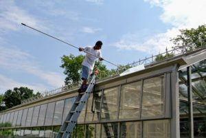 He cleans from the top most window to the bottom -- and he is seeing good results from the hard work.