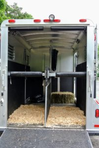 We always make sure the horses travel as comfortably and as safely as possible.