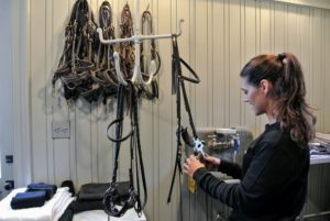 Inside my stable tack room, Sarah cleans the bridles with saddle soap, so they look their best for our rides.