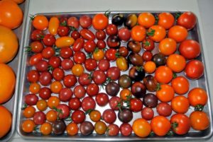 I always have trays of tomatoes in the kitchen during this time of year. I love to cook with them and eat them fresh.
