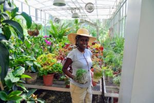 Our gardening intern, Wambui, is also helping with this process - there are a lot of plants to move.