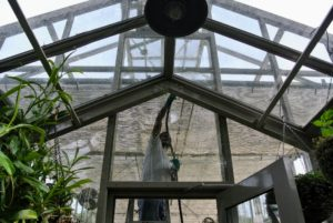 On each end of the greenhouse is a smaller vestibule where we keep additional potted specimens.