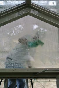 Once again, Carlos carefully scrubs the windows with Barkeeper's Friend and a sponge.