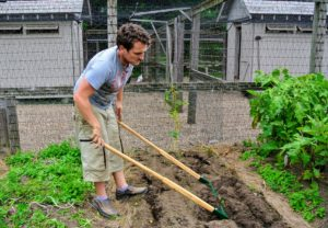 Ryan starts away from the potatoes and works his way in to safely turn over the soil.