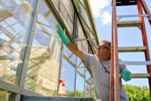 Fernando starts cleaning the lower windows. The CLR is poured into a spray bottle and then applied.