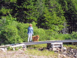 I love hiking whenever I am in Maine. Here I am with my dear Chow Chow, GK, during one of our walks around Jordan Pond.