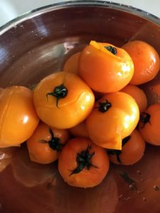 These tomatoes are now cool and ready to be peeled and seeded - see the skins? They are already separating.
