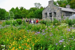 The group then walked through my flower cutting garden - just outside the main greenhouse and head house.