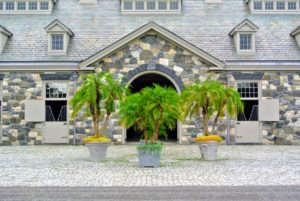 During the warmer months, I love to decorate the stable courtyard with large tropical plants - these potted palms add such a pretty touch to the natural stone color.