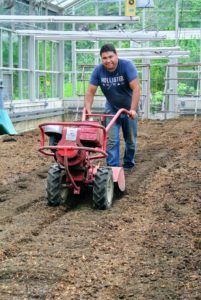 For a second pass, Wilmer tilled the garden with our trusted Troy-Bilt Pony Rear-Tine Tiller. It helps to level the ground as it turns over the soil.