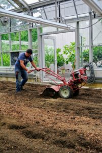 Wilmer continues back and forth with the rototiller along the length of the bed.