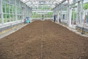 The soil is all ready to make the season's individual garden beds. I like to change the formation of the beds every season to experiment how we can best utilize the space.