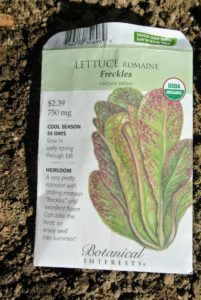 "This is Romaine lettuce ""Freckles"" from Botanical Interests. It is a very pretty Romaine with striking maroon markings and excellent flavor."