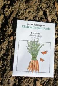 "We also planted John Scheepers carrots ""Adelaide Baby"". These carrots will take about 65 to 70 days to develop. This outstanding, tender-crisp and flavorful mini-carrot is sure to be snapped up quickly,"