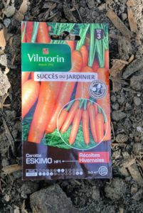 "Here is another good carrot variety from the french seed producer, Vilmorin. This variety is called ""Eskimo""."