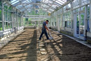 Once Wilmer is done raking all the beds, he gives them a good, drink of water with a fine spray. The beds will be kept moist but not dripping wet until the seeds sprout.