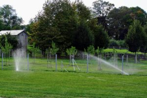 And lastly - the lawn is given a thorough watering. It will be watered every day until the grass grows to mowing height. A good tip is to keep the top one-fourth inch of soil moist so the seed stays wet.