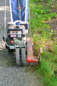 Power edgers are easy to use – just line up the edger blade on the turf side of the road, and turn it on. On this gas powered machine, one has to pull a cord to start the motor.